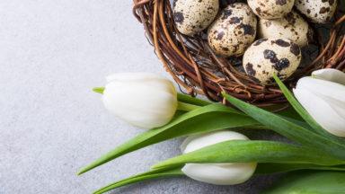 VD Blogg: Våren är på väg
