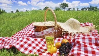 Picknickkorgar